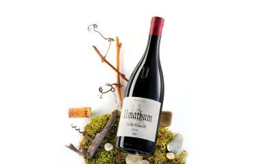 Weinfotos von Weinflaschen Fotograf
